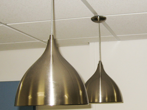 Tulip shaped pendant lights in a brass finish