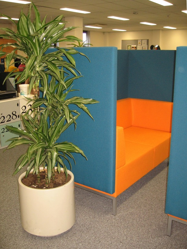 Tall backed sofas for one to one meetings